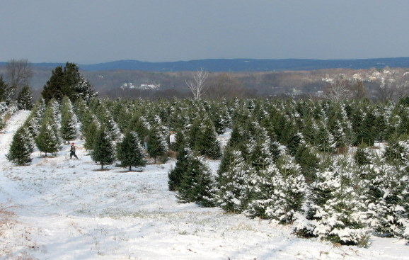Farmland preservation candy cane hill offers panoramic vistas at jones family farm workwithnaturefo